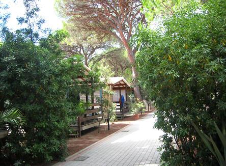 Prenota Prima Giugno in casa mobile o bungalow a Marina di Grosseto