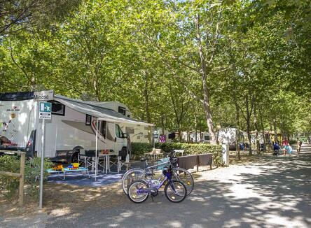 Camping Deal 2019