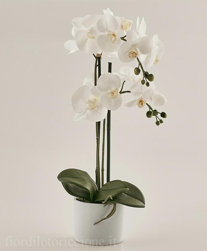 Pianta di orchidea artificiale scegli il colore fior for Orchidea pianta