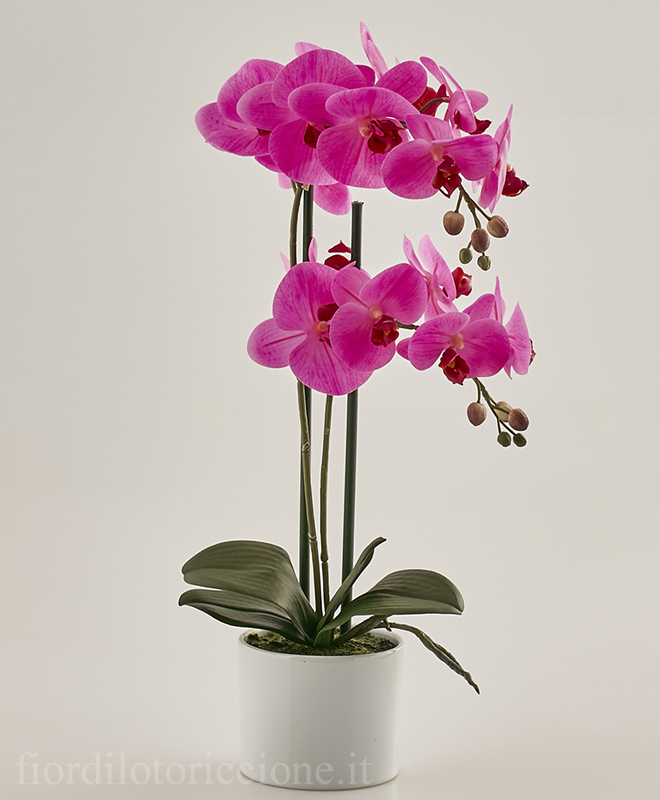 Pianta di orchidea artificiale scegli il colore piante for Orchidea finta