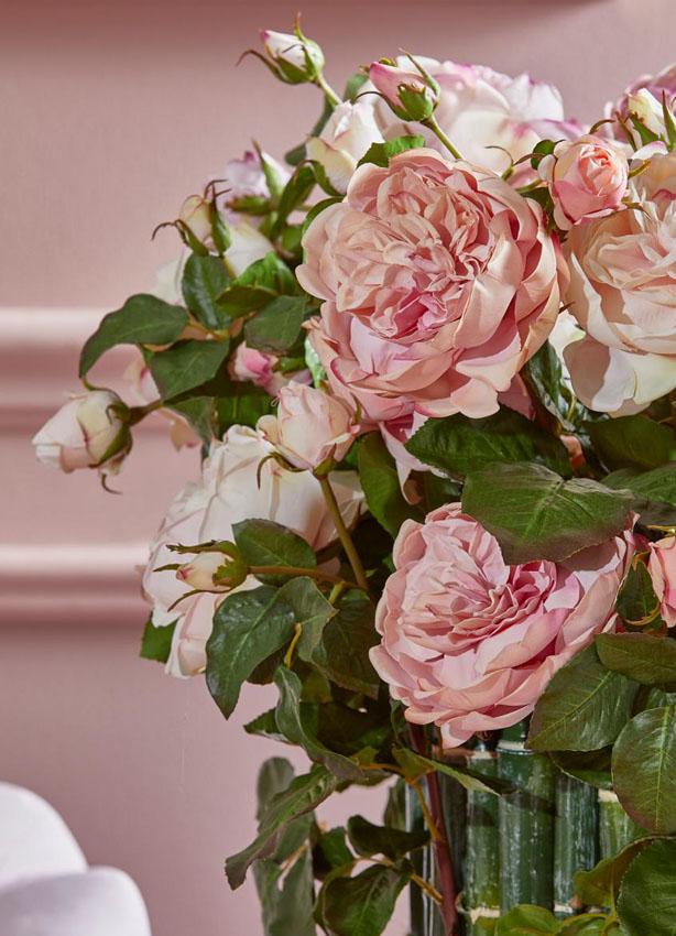 Mazzo Di Fiori Un Inglese.Rosa Inglese Superior Scegli Il Colore Fior Di Loto Riccione