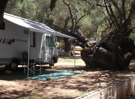 Seasonal Offer at camping village in Palinuro nel Cilento