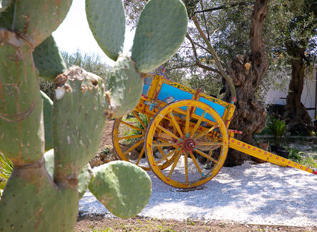 May Glamping Offer in Sicily in the Val di Noto